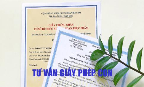 tu-van-giay-phep-con
